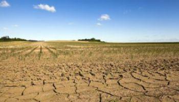 La commune est reconnue en état de catastrophe naturelle pour la sécheresse de 2019